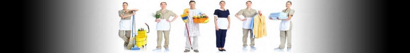 Entretien ménager femme ménage